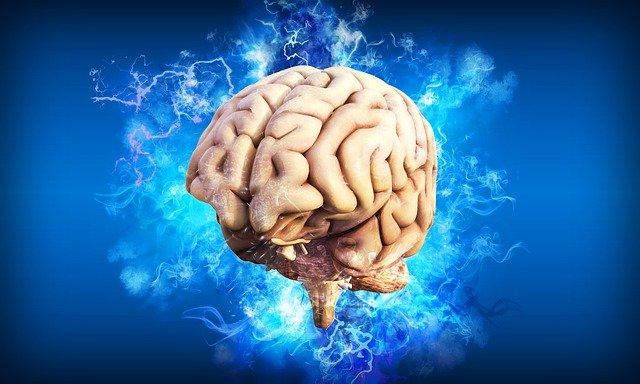 Como aumentar la inteligencia en un mes